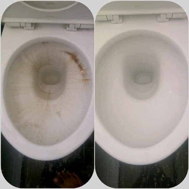 pembersih kamar mandi